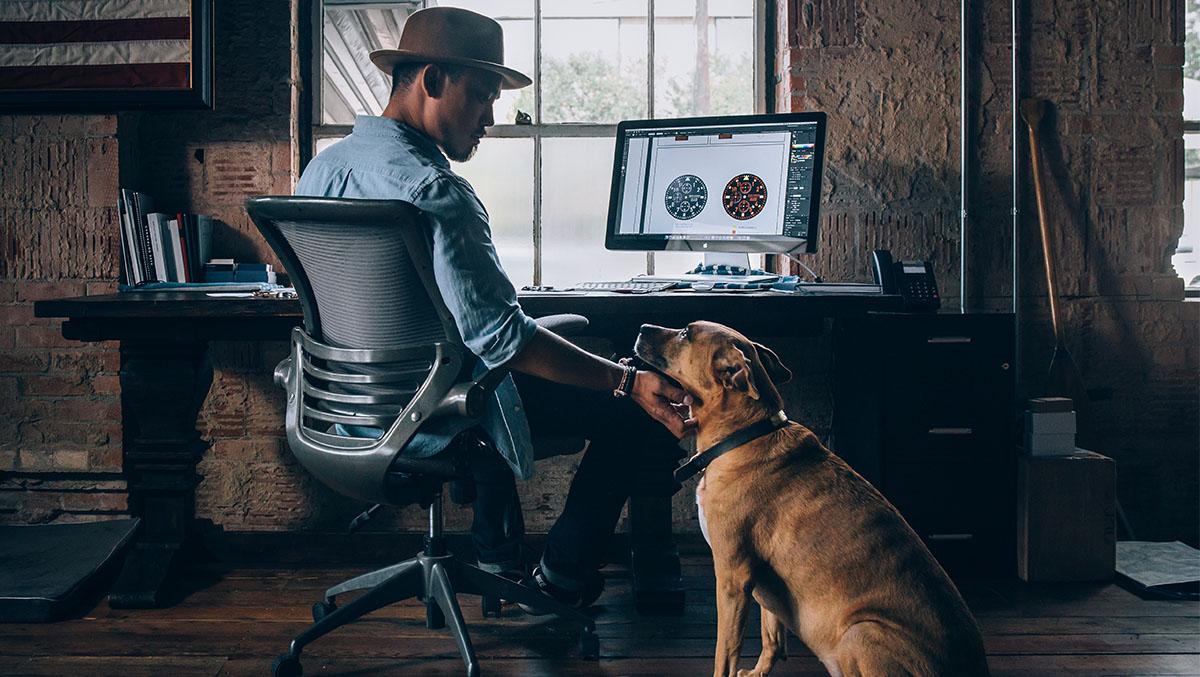 cane in ufficio